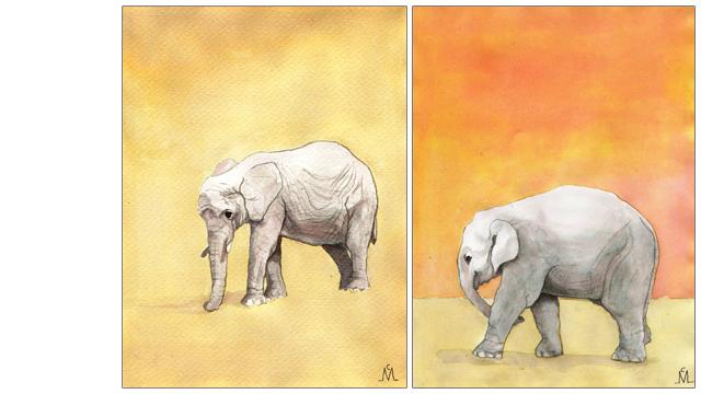 Ilustración - Elefantes
